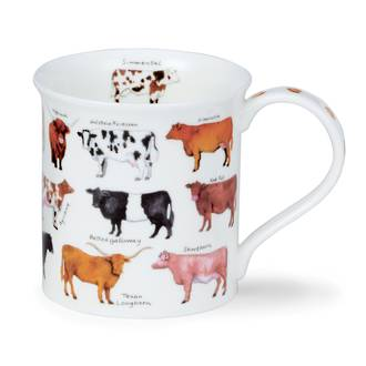 Animal Breeds - Cattle